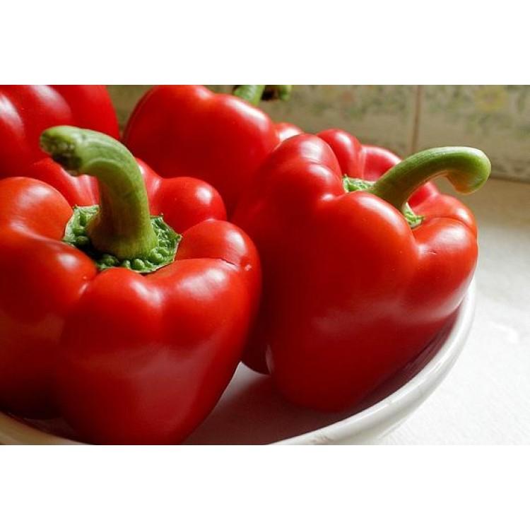 Asti Red Sweet Pepper