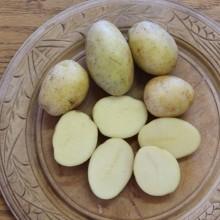 Chopin Potatoes
