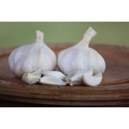 Egyptian White Garlic 200's