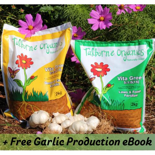 Elephant / Giant Garlic and Organic Fertilizer Combo
