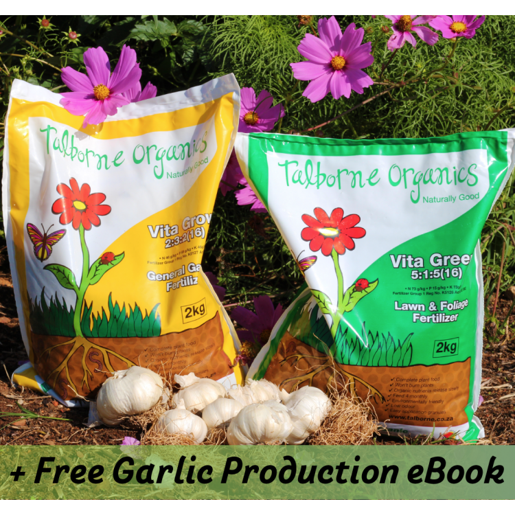 Egyptian Pink Garlic and Organic Fertilizer Combo