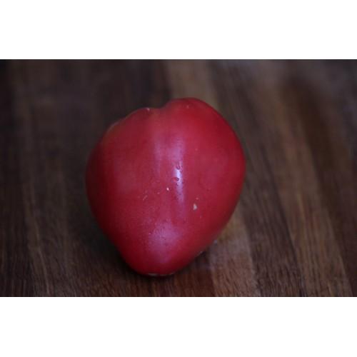 Giant Italian Tomato