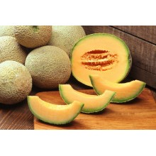 Honey Rock Melon
