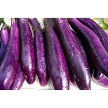 Long Purple Brinjal
