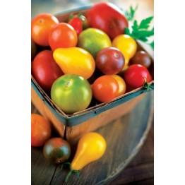Cherry Tomato Blend