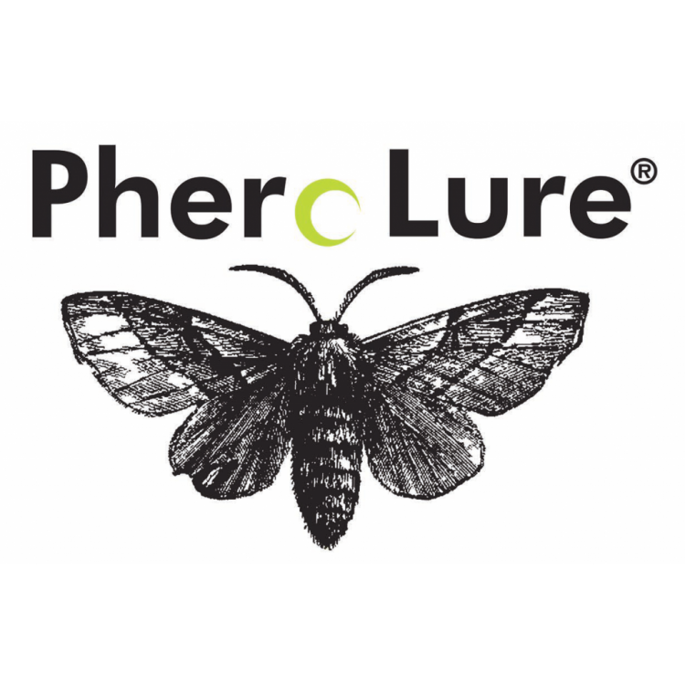 Pherolure Fruit Fly (3's)