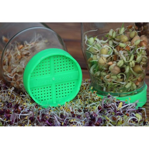 Sprouting System (Twin Pack)