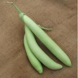 Thai Long Green Eggplant
