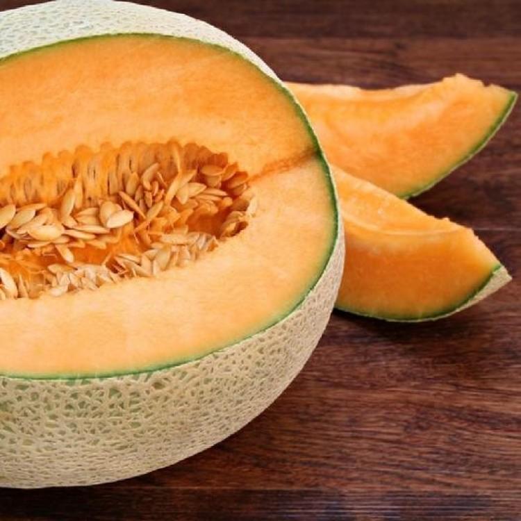 Topmark Melon