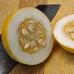 Vine Peach Melon