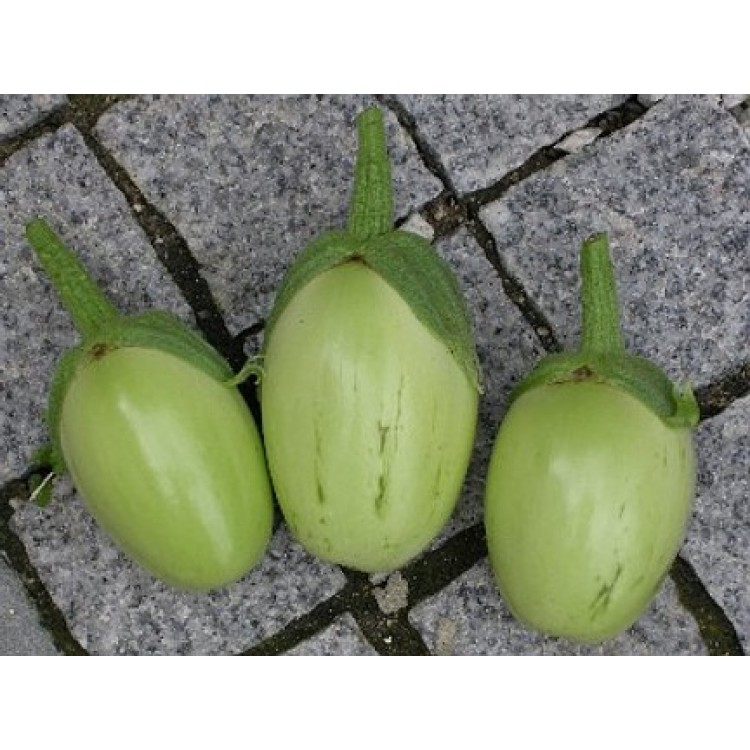 Applegreen Eggplant