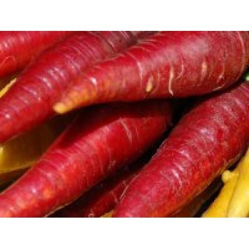 Atomic Red Carrot