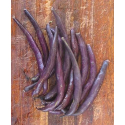 Blue Peter Pole Beans