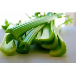 Celery Tall Utah