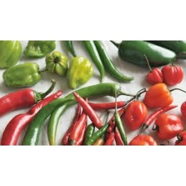 The Chilli Growers Kit