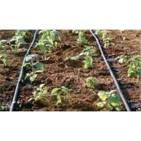 Drip Irrigation Kit (60 Sqm)