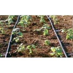 Drip Irrigation Kit (100 Sqm)