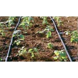 Drip Irrigation Kit (60 Sqm)
