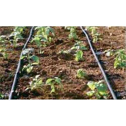 Drip Irrigation Kit (100 Sqm)