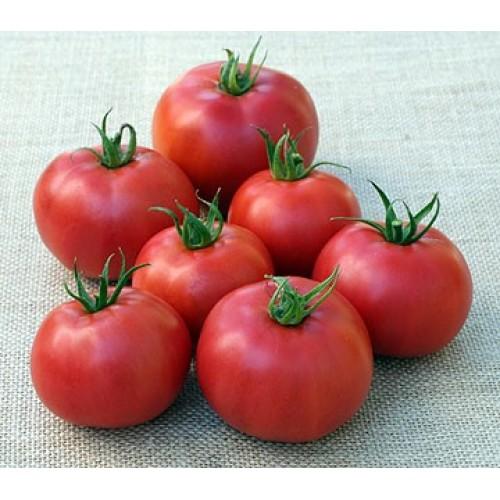 Eva Purple Ball Tomato