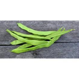 Northeaster Pole Bean