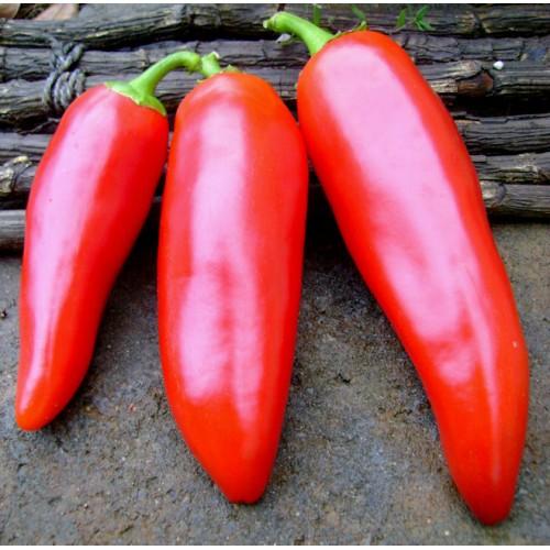 Corno di Torro Red Sweet Pepper