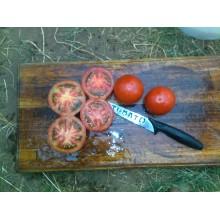 Santa Clara Sauce Tomato